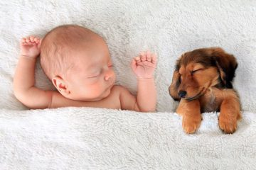baby en huisdier